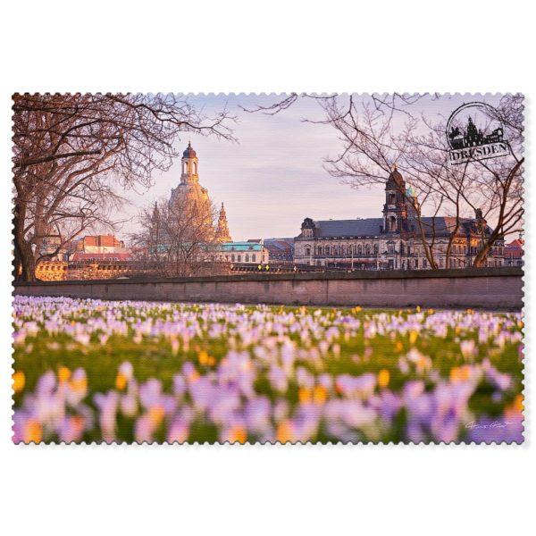 Dresden Postkarte hpd006