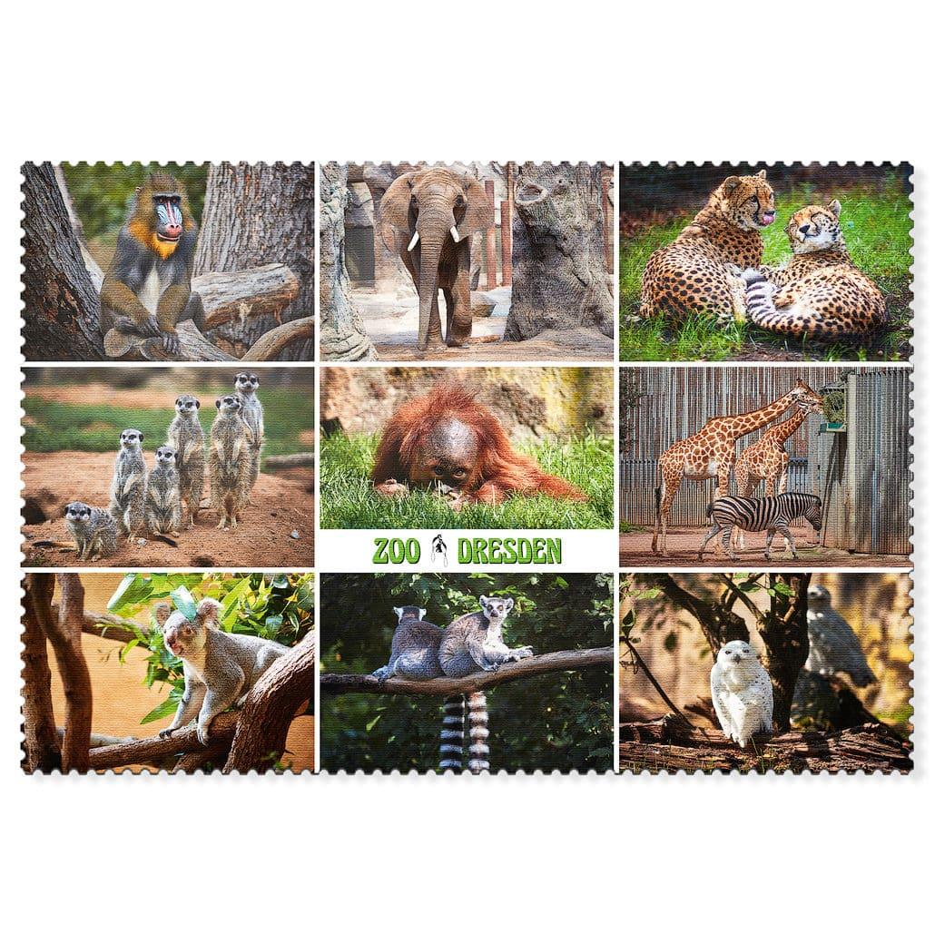 Zoo Dresden Postkarte cd001 Hans Fineart