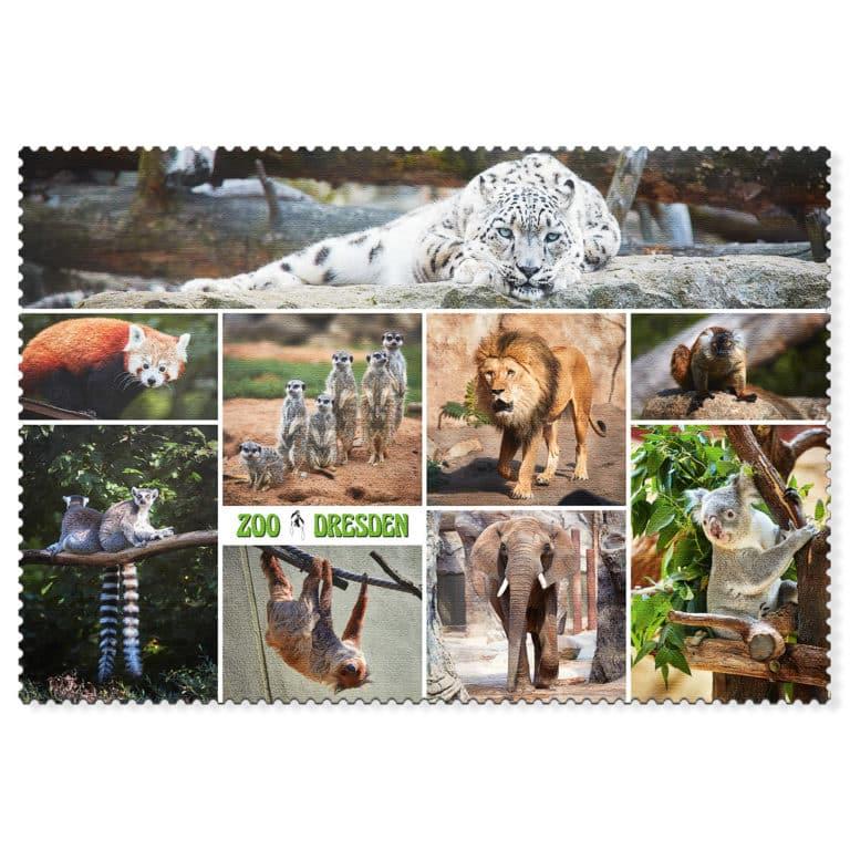 Zoo Dresden Postkarte cd002 Hans Fineart