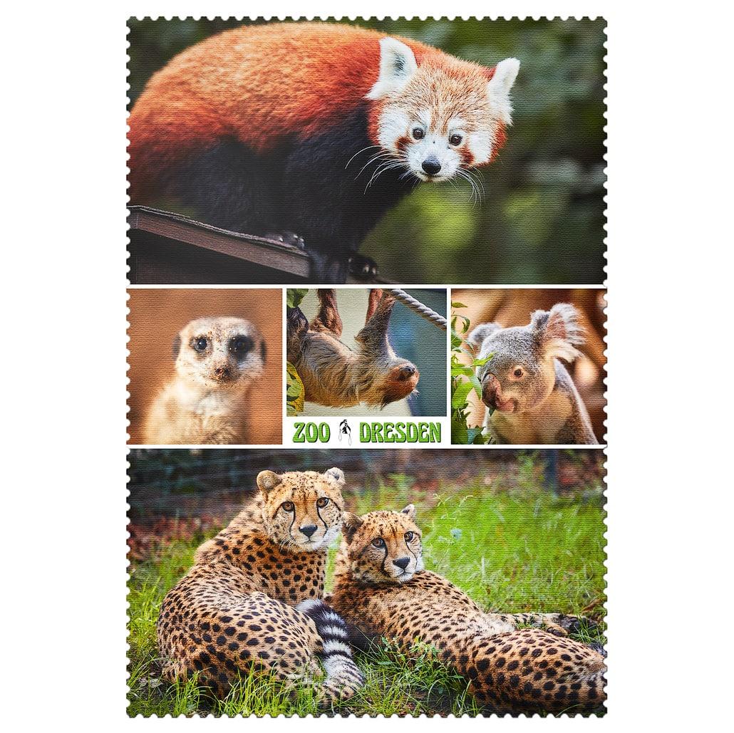Zoo Dresden Postkarte cd003 Hans Fineart