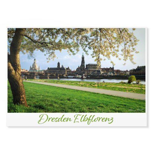 Dresden Postkarte lui010 Hans Fineart