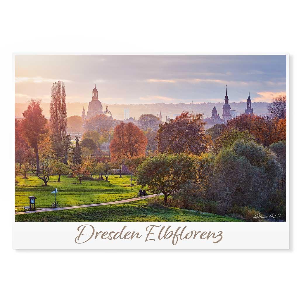 Dresden Postkarte lui014 Hans Fineart