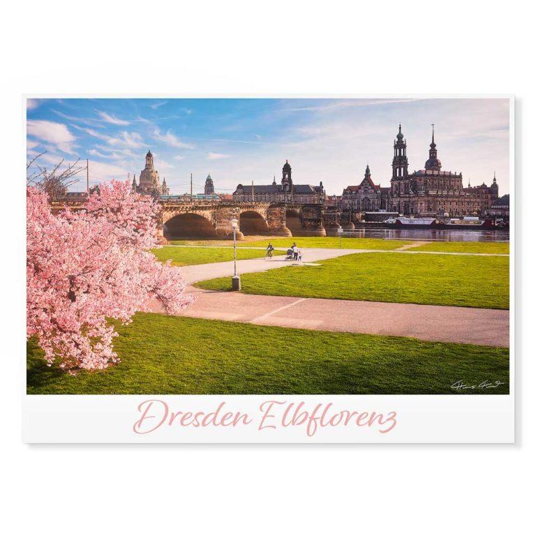 Dresden Postkarte lui049 Hans Fineart