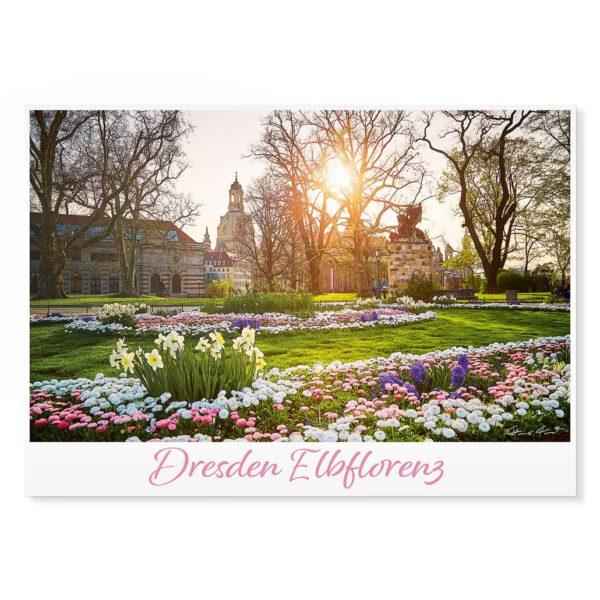 Dresden Postkarte lui050 Hans Fineart