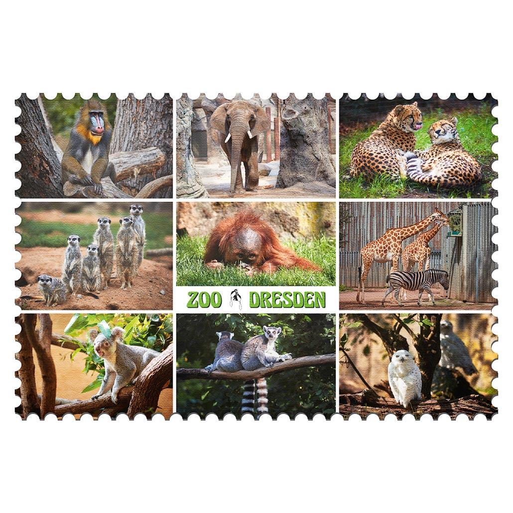Zoo Dresden Magnet mp001