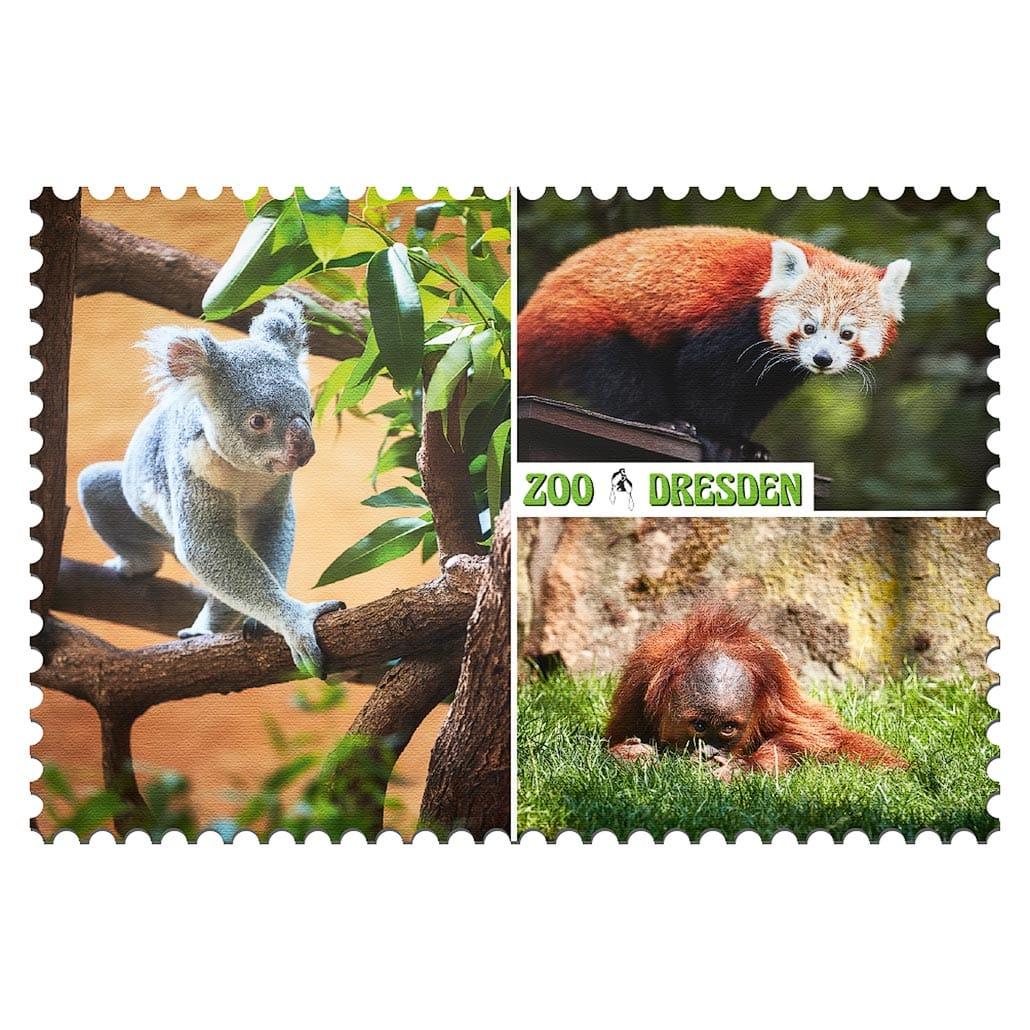 Zoo Dresden Magnet mp003