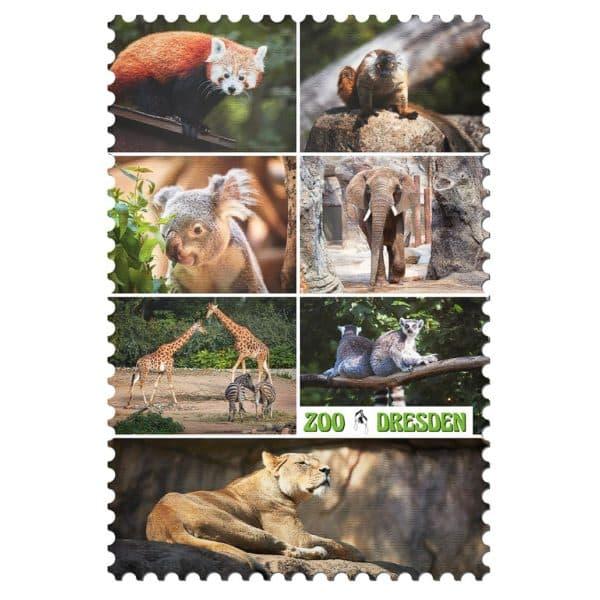 Zoo Dresden Magnet mp004